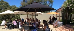 The Coterie At Coal Valley Vineyard