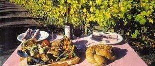 Marion's Vineyard