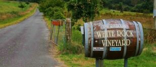White Rock Vineyard