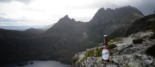 Spreyton Cider - A Sparkling Product Of Tasmanian Apples