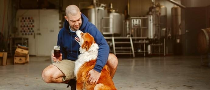 Van Dieman Brewing - A Tasmanian Success Story