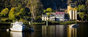 Experience Launceston's Food Scene With Perfect Day Tours